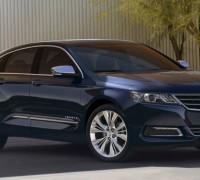impala-15