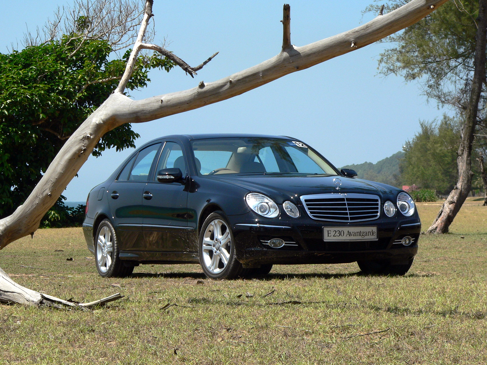 W211 Mercedes-Benz E230 Avantgarde Review