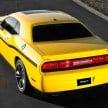 yellow-jacket-02